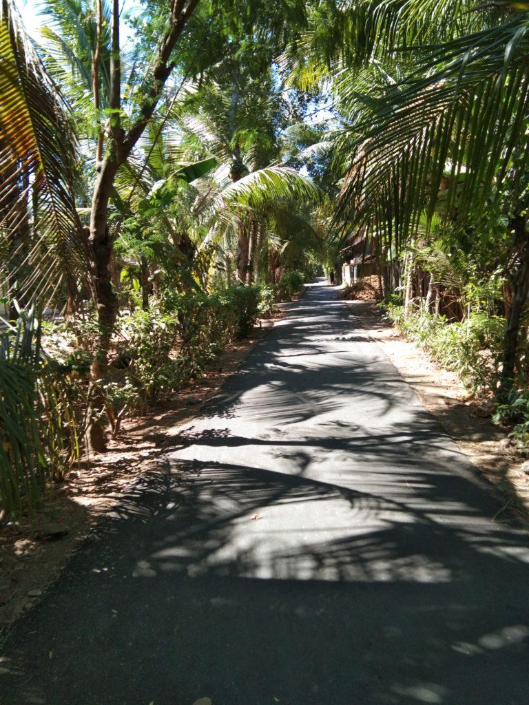 Jalanan Desa